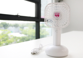 Portable electric fan