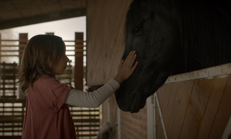 말과 소녀
